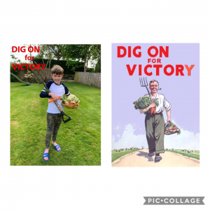 finlay-dig-for-victory-poster