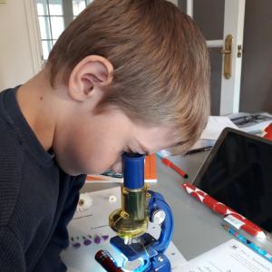 fraser-microscope