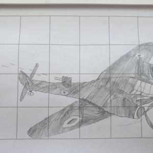 williams-plane