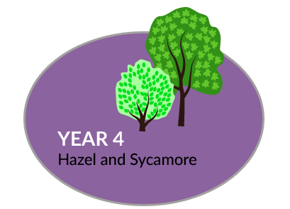 Year 4